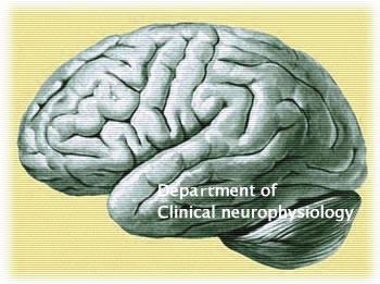 050424-Brain